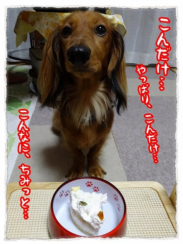 2013_10_15_4.jpg