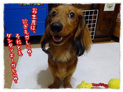 2013_10_17_2.jpg
