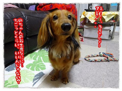 2013_10_18_2.jpg
