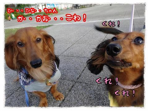 2013_10_1_2.jpg