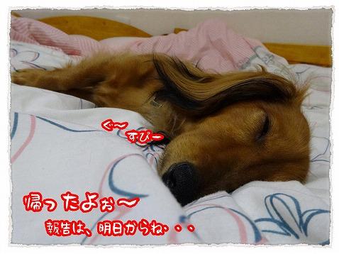 2013_10_29_1.jpg