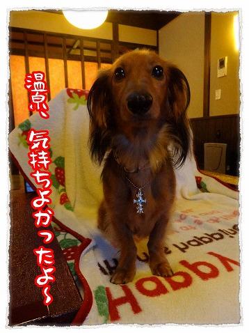 2013_10_30_.jpg