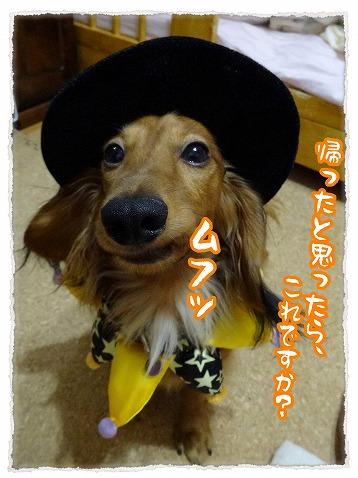 2013_10_31_2.jpg