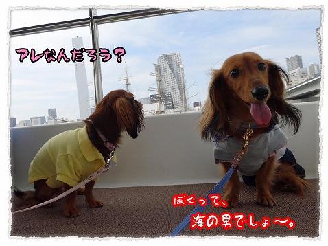 2013_10_6_2.jpg