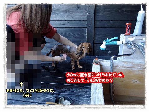 2013_11_11_11.jpg