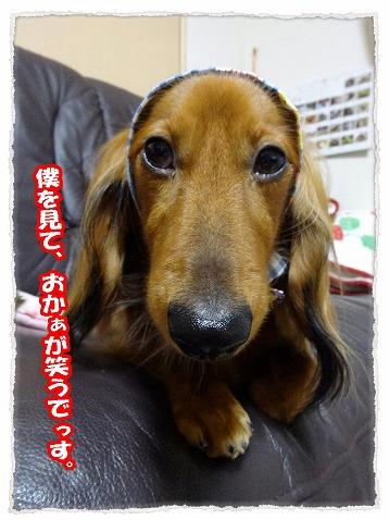 2013_11_14_11.jpg