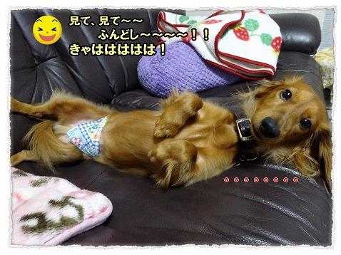 2013_11_15_2.jpg