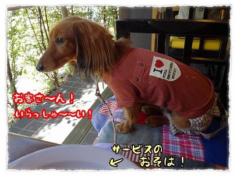 2013_11_2_3.jpg