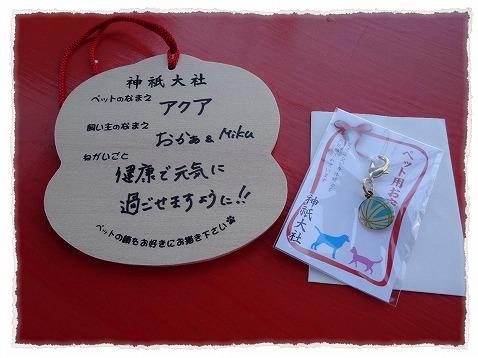 2013_11_7_3.jpg
