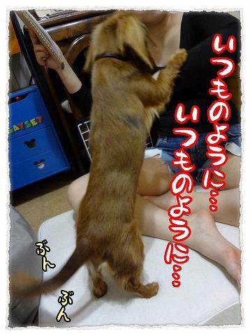 2013_3_30_3.jpg
