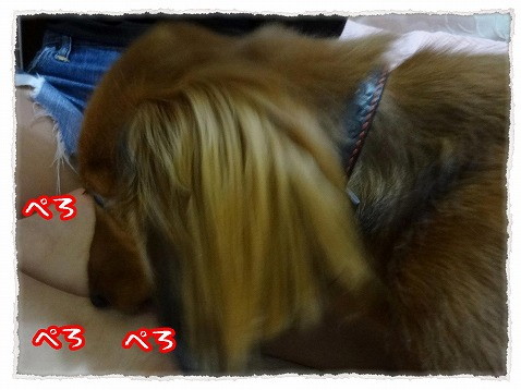 2013_3_30_5.jpg