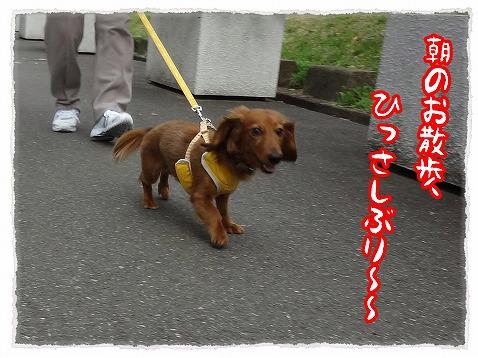 2013_4_13_1.jpg