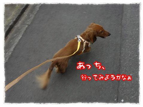 2013_4_13_2.jpg