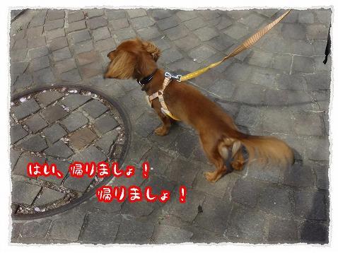 2013_4_13_6.jpg