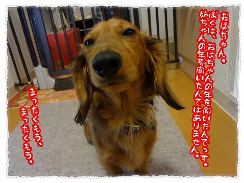 2013_4_15_3.jpg
