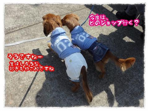 2013_4_16_3.jpg
