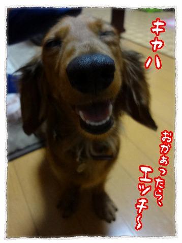 2013_4_20_1.jpg