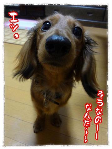 2013_4_20_2.jpg