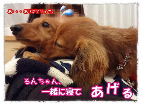 2013_4_23_11.jpg
