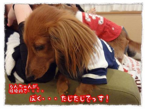 2013_4_23_7.jpg