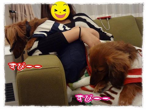 2013_4_23_8.jpg