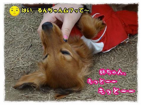 2013_4_26_1.jpg