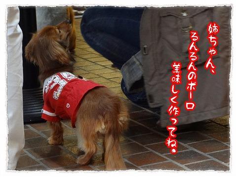 2013_4_26_3.jpg