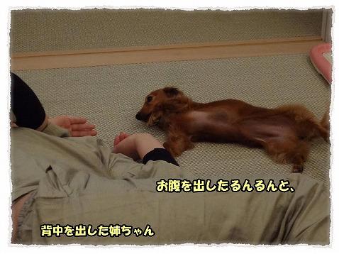 2013_4_26_4.jpg