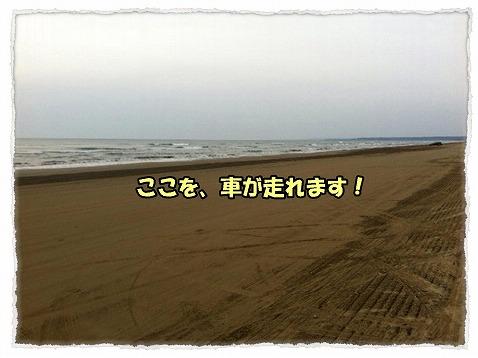 2013_4_2_3.jpg