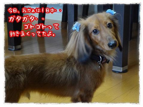 2013_4_30_1.jpg