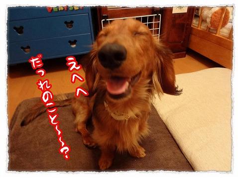 2013_4_3_3.jpg