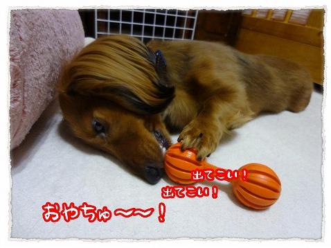 2013_4_4_1.jpg