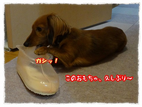 2013_4_5_1.jpg