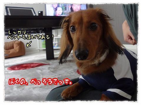 2013_5_11_1.jpg