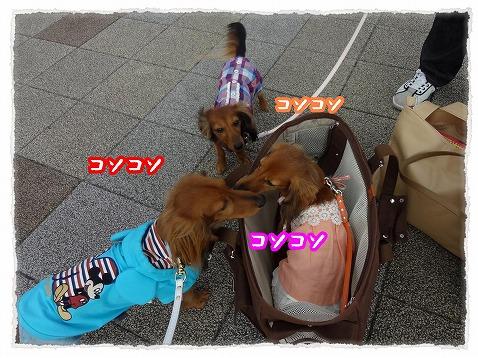 2013_5_14_14.jpg