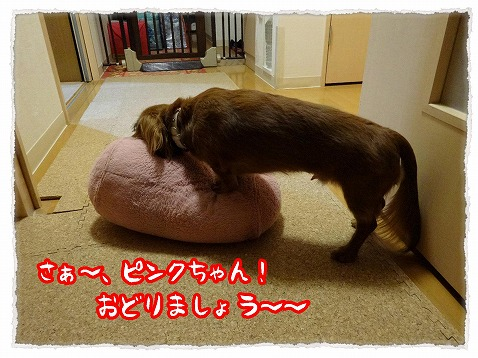 2013_5_18_3.jpg