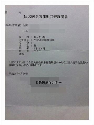 2013_5_1_1.jpg