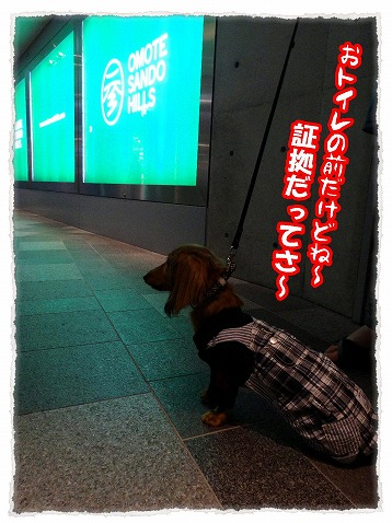 2013_5_21_1.jpg