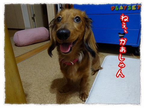 2013_5_23_1.jpg