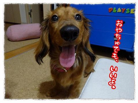 2013_5_23_3.jpg