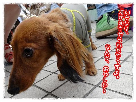 2013_5_26_1.jpg