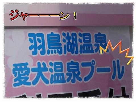 2013_5_26_2.jpg