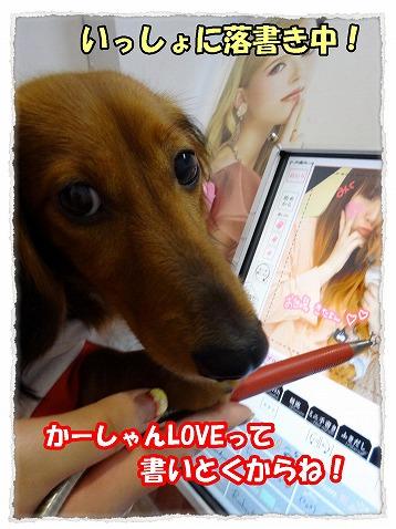 2013_5_28_4.jpg