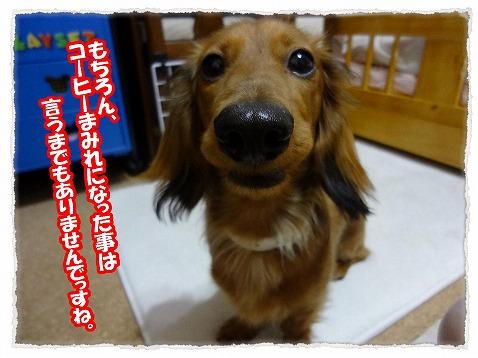 2013_5_29_1.jpg