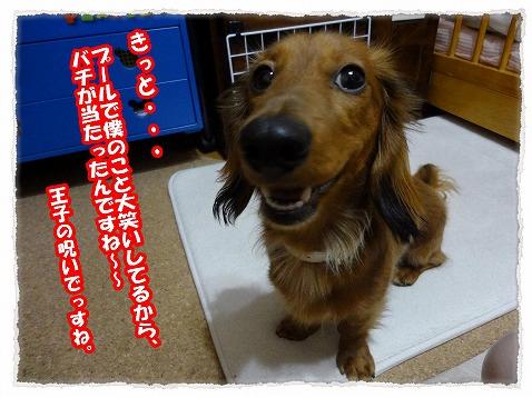 2013_5_29_2.jpg