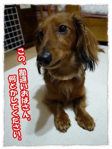 2013_5_31_3.jpg