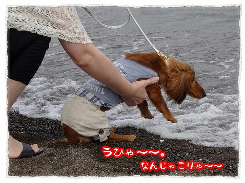 2013_6_10_2.jpg