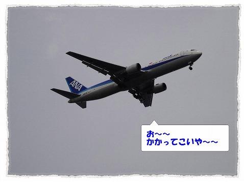 2013_6_16_3.jpg