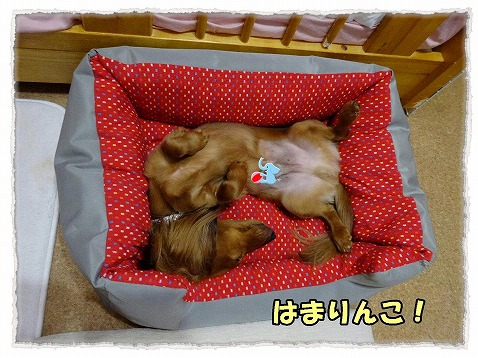 2013_6_19_11.jpg