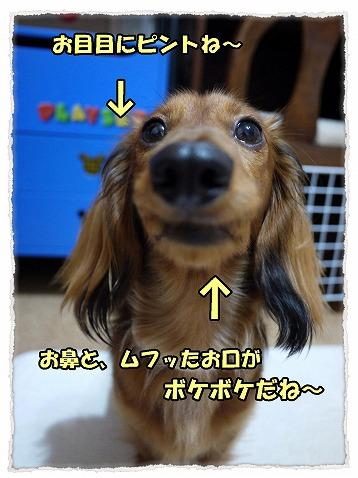 2013_6_1_6.jpg